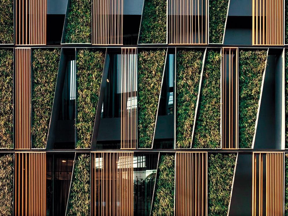 Technik Anwendungstechniken Der Fassadenbegrunung Detail Inspiration