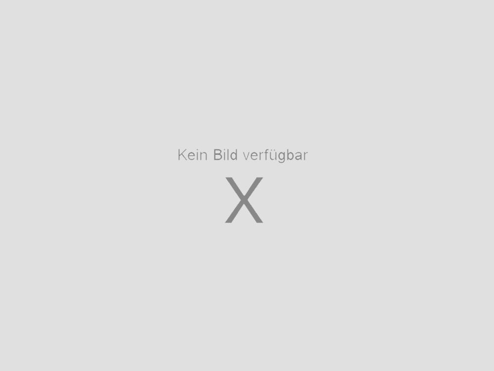 ... Single Schallplatte Vinyl (5255517) aus Neusiedl am See